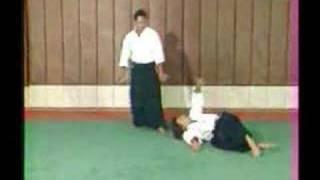 Aikido Cristian Tissier  Kyu Techniques