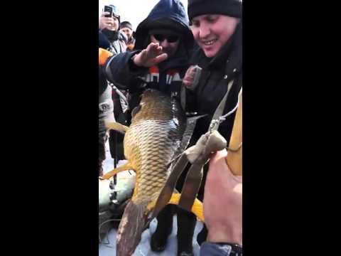 рыбалка на обском водохранилище сазан