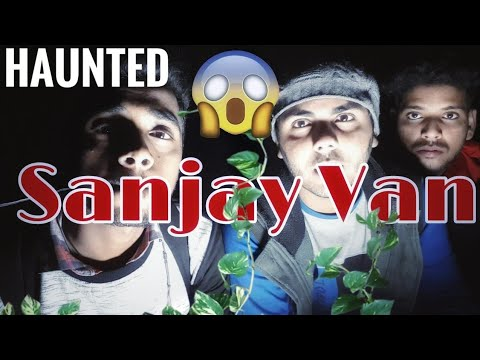 Horror activity/Night Stay In Haunted Sanjay Van/Top Haunted forest of India/Paranormal activity