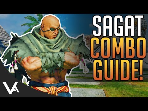 SFV - Sagat Combos! Combo Guide For The Next New DLC Character In Street Fighter 5 Arcade Edition