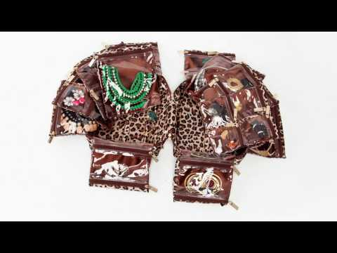 Tiara Jet Setter Jewelry Case