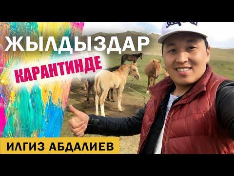 Козуларга сүт берген Илгиз Абдалиев