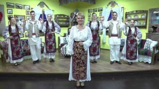 Mihaela Petrovici - Ai albit bage la tample