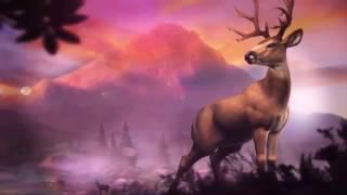 Deer Hunter 2019