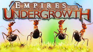The Ant EMPIRE! - Building a Black ANT COLONY! - Empires of the Undergrowth Gameplay