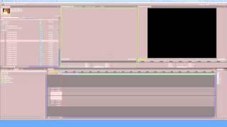Premiere Pro CS 5 Part 4 tutorial adding metadata