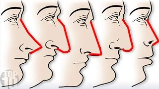 Your Nose Reveals A Ton About Your Personality!