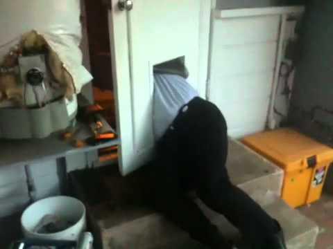 Man Stuck In Dog Door Youtube