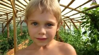 Семья Бровченко. Жизнь за кадром. Обычные будни + письма и бандероли. (часть 49)