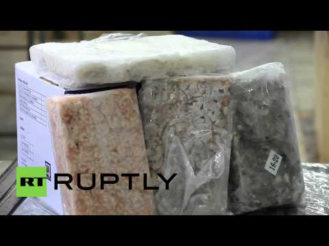 India: Meat factory to replace EU and fill Russia's fleshy appetite