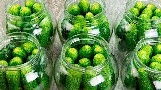 Пришло время мариновать огурцы на зиму! ТОП 5 самых вкусных рецептов!   Appetitno.TV