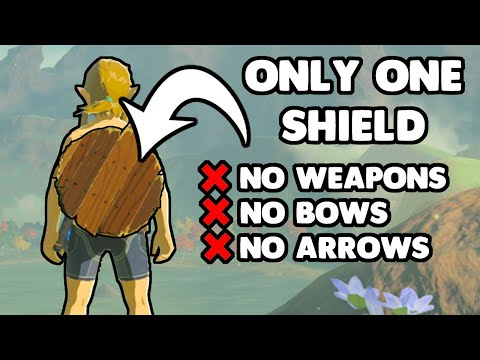 Breath of the Wild with One Shield and NOTHING ELSE