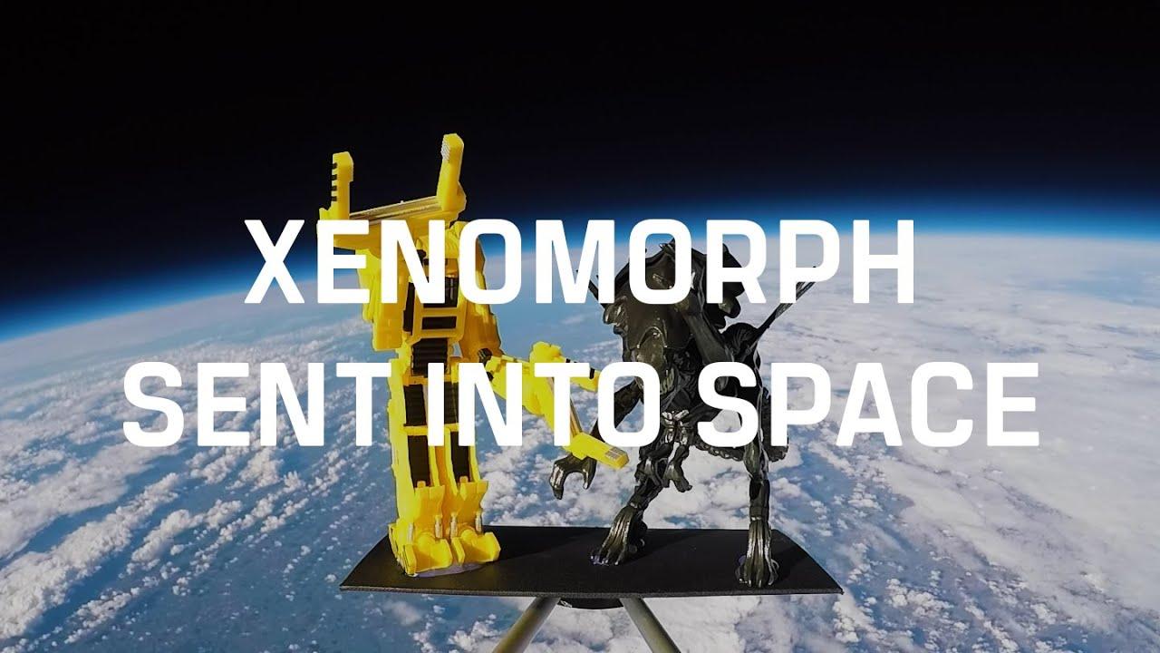 The Xenomorph Queen in space