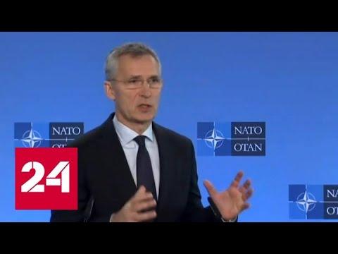В НАТО призвали к мирному решению сирийско-турецкого конфлита - Россия 24