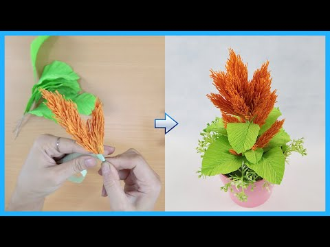 How To Make Celosia Paper Flower From Crepe Paper | DIY Paper Celosia Flowers