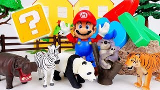 Super Mario's Wild Animal Farm~! Learn Animal Names With Kinetic Sand #ToyMartTV