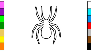Colorful Spider Coloring Page for Children