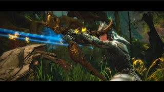 Guild Wars 2: Heart of Thorns – The Dragonhunter, Guardian's Elite Specialization