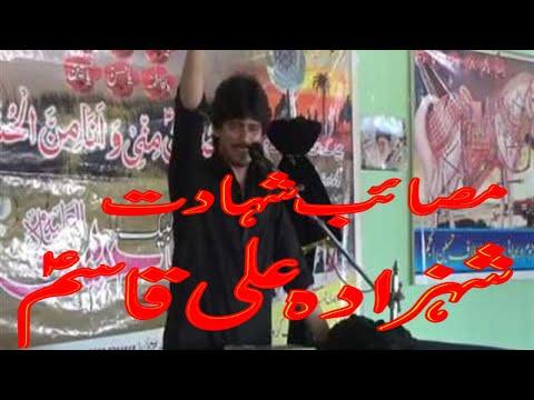 Shahdat Shazada Ali Qasim_Zakir Syed Nazakat Abbas Shah_Imam Bargah Darbar e Hussain Jhok Jaffir Sha