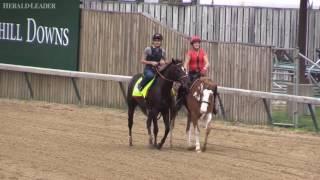John Clay and Ben Roberts handicap Kentucky Derby 143