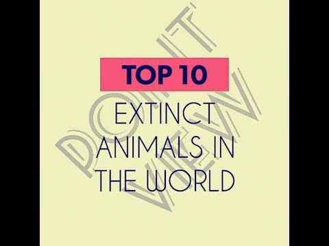 Top 10 extinct animals in the world you should know. Animals got extinction due to humans.