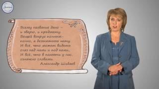 Русский 3 Имя существительное как часть речи