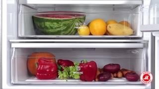 видео класс энергопотребления морозильных камер