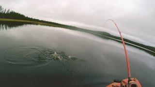Как упустить ВСЕХ щук Возвращение на ТОПВОТЕР ное озеро Осенняя рыбалка