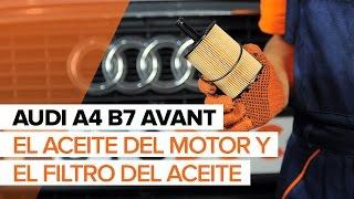 Mantenimiento Audi A4 b6 - vídeo guía