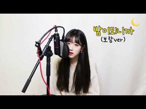 펀치(Punch) - 밤이되니까(When Night Is Falling) COVER by 보람
