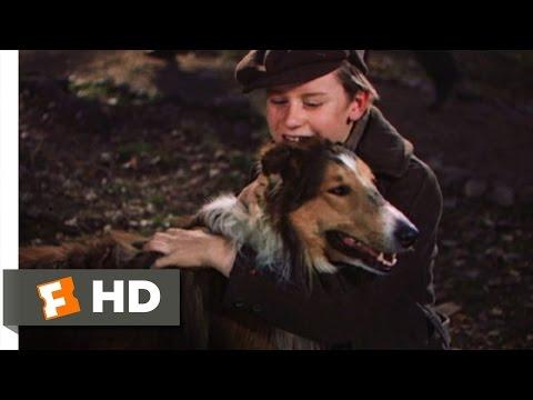 Lassie Come Home (10/10) Movie CLIP - My Lassie Come Home (1943) HD
