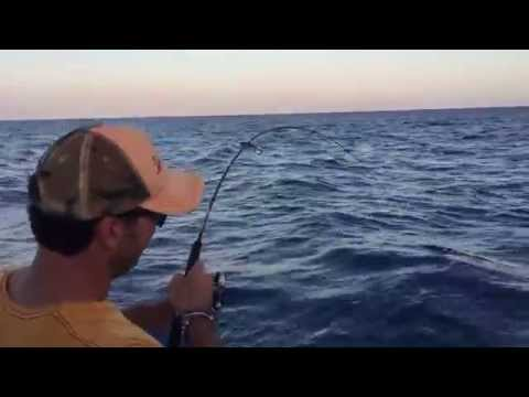 Offshore Light Tackles
