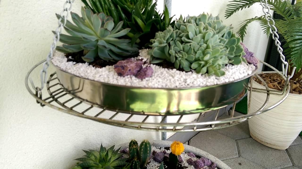 Mini jardins de cactus e suculentas resultado final for Jardin miniature