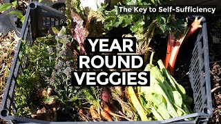 Secrets For Self Sufficiency   5 Tips For Eating Seasonally (2020)