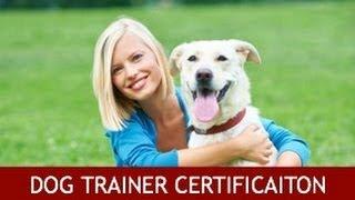 Dog Training Certification