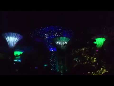 Musical Light Show, Tree Grove, Garden By The Bay