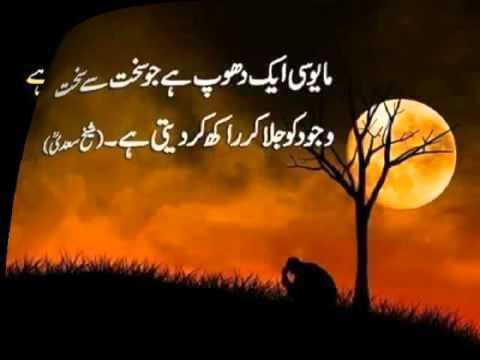beautiful urdu quotes | picture quotes | beautiful islamic quotes in urdu images