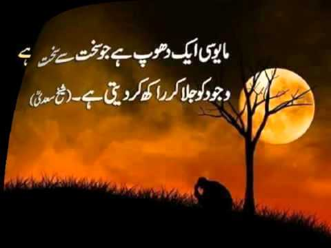 Beautiful Urdu Quotes