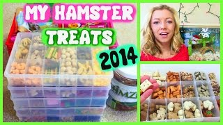 All My Hamster TREATS | December 2014 Thumbnail