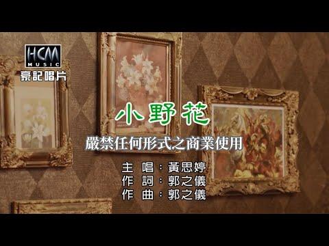 黃思婷-小野花【KTV導唱字幕】1080p