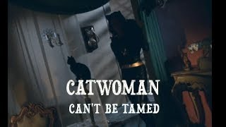 CATWOMAN CANT BE TAMED