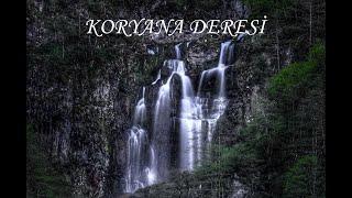 Koryana Deresi, Trabzon Akçaabat Yayla, Doğa, Huzur.  Eşsiz Müzik Adem Kodalak Resimi