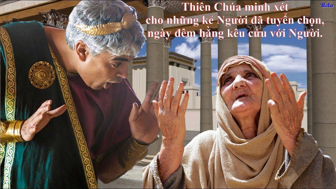 Tin Mừng Chúa Nhật 29 Thường Niên - Năm C (...