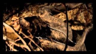 видео Неповторимая рок-музыка
