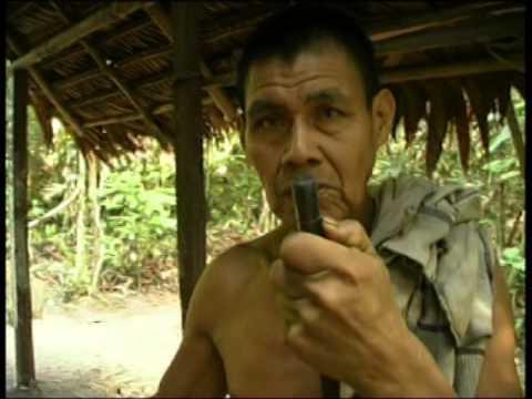ayahuasca en iquitos perú youtube