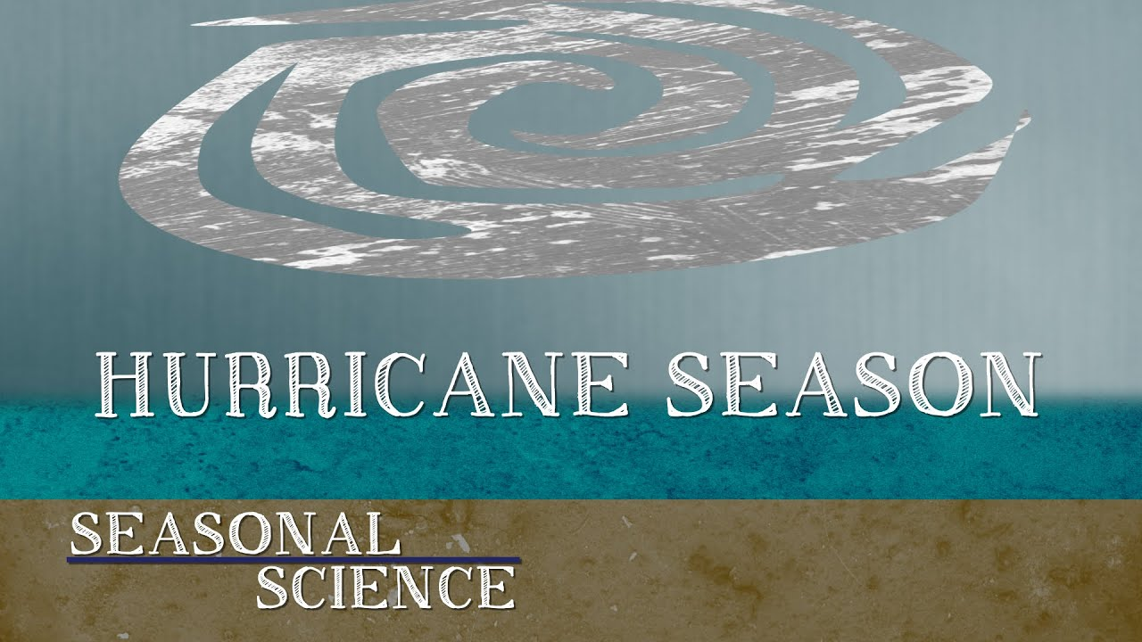 How Do Hurricanes Form? | Seasonal Science | UNC-TV - YouTube