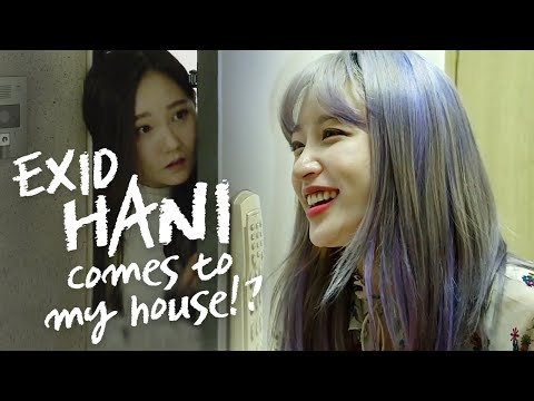 What if Hani Came To My House?  • ENG SUB • dingo kdrama