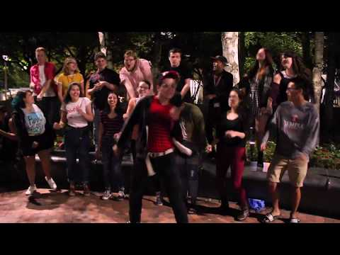Animal Spirits (A Cappella) - Temple University's Pitch, Please