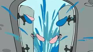 правила интимной гигиены мультфильм для девочек