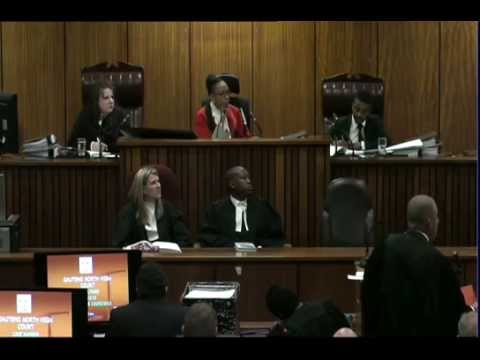 Oscar Pistorius Trial: Monday 30 June 2014, Session 2